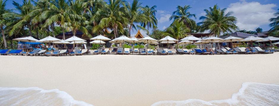 thai house beach resort, hotel,kohsamui,thailand, beach house samui hotel, beach house samui hotel 3, beach house samui hotel 3 koh samui